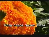 Мурки - Воровайки