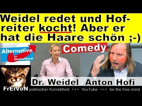 Weidel (AfD) redet und Hofreiter kocht bei 100 °C - aber er hat die Haare schön ;-) Comedy HD