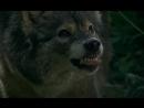 Фрагмент 1 т/с Граница: Таежный роман (2000) Россия, реж. Александр Митта