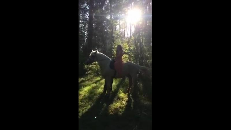 Фотосессия на коне