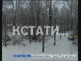 Забор, ставший биологическим оружием, украли жулики в Большемурашкинском районе