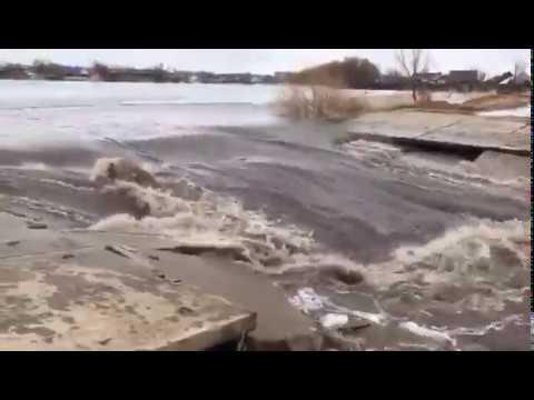 Волчиха, паводок 2018 (Barnaul22)
