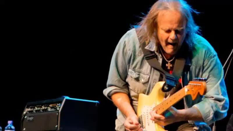 Walter Trout-Too Much To Carry