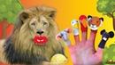 Finger Family Baby Songs / funny videos for kids /compilation for kindergaten 2018