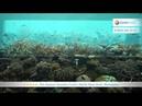 Per Aquum Huvafen Fushi 5* Северный Мале Атолл Мальдивы