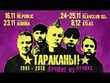 ТАРАКАНЫ! в Четырех Столицах Москва, Питер, Киев, Минск