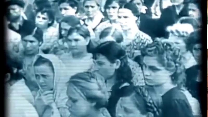 Мизандрия Феминофашизм Бабораб Матриархат Потреблядство Современная баба