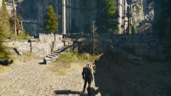 Witcher 3: Wild Hunt - Злодеи и разрушители миров - Эльфы народа Ольх (Aen Elle)