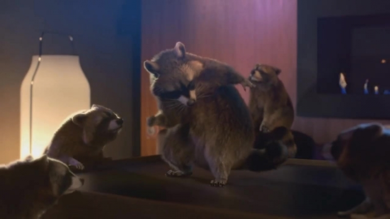 Schneider Electric - Raccoon Dance Party
