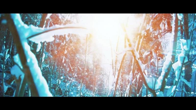 MARKUS SCHULZ ft. NIKKI FLORES - We Are The Light