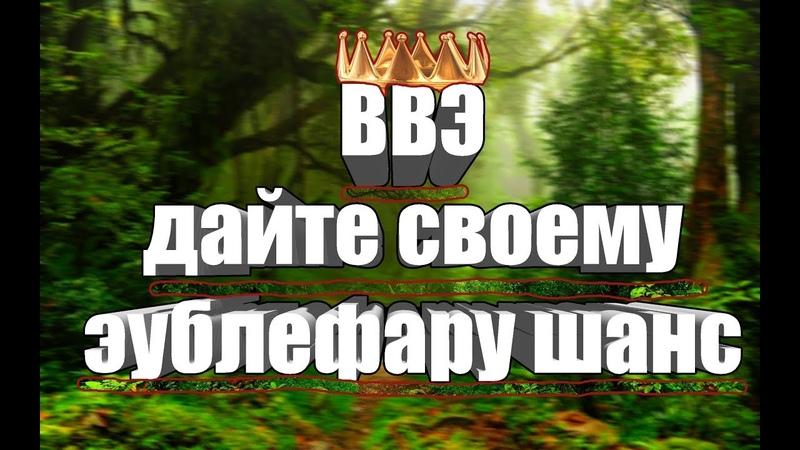 Приглашение на ВВЭ, Виртуальную Выставку Эублефаров!
