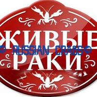 """Логотип Живые Раки / Самара / """" RUSSIAN CRABS"""""""