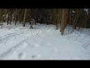Жестокая зима не отпускает.Выходные в стиле Трофи-лайф! Нахабинские выселки. Нивы,деф,паджеро,уазы!