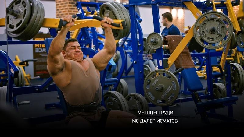 Тренировка мышц груди Далер Исматов