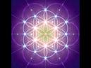 432 Hz Frequência dos Milagres Aumentar Energia Positiva Liberar Lutas e conflitos internos