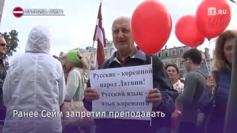 в Латвии люди возмущены решением парламента запретить преподавание на русском языке в русских школах