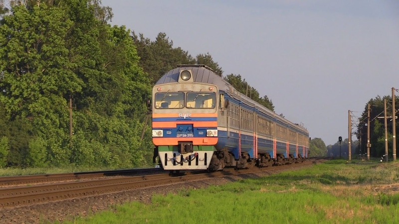 [БЧ] Дизель-поезда ДР1А-319 и 151 / [BCh] DR1A-319 and 151 DMU's
