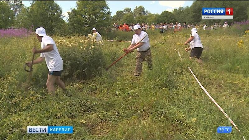 В Спасской губе пятый раз прошел Фестиваль сена