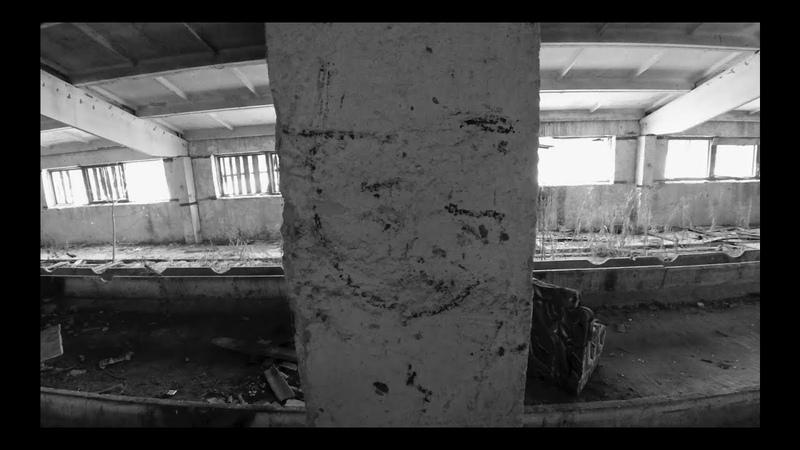 Смерть художника (АукцЫон) / Убьют / Выжить