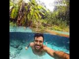 Секретный бассейн в джунглях