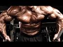 Хорошо ли иметь огромные мышцы. Химики и натуралы. Как их отличить.