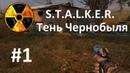 ч.1-Прохождение S.T.A.L.K.E.R. Тень Чернобыля-Первое нападение