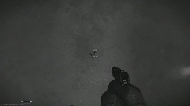 Game.webm EscapeFromTarkov