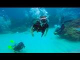 Diving - Atlantica - DR - 2016