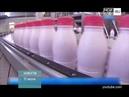 ТНТ-Поиск: Новая маркировка молочной продукции