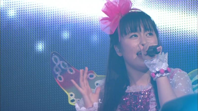 Momoiro Clover Z - Shiroi Kaze (Momoiro Christmas 2012 Day 1)