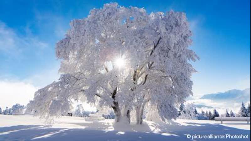 Schöner Winter Eis Schnee und Gemütlichkeit