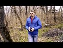 Страна читающая— Елисей Кравцов СветланаПичужкина читает произведение «Матрёнин двор»