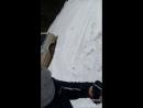 Беги, Вася Русским холод не страшен! 😅
