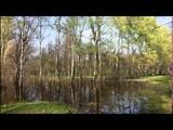 Мой фильм Сергей ЗАХАРОВ Талая вода
