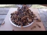 Эксперимент - что курение делает с нашими легкими!