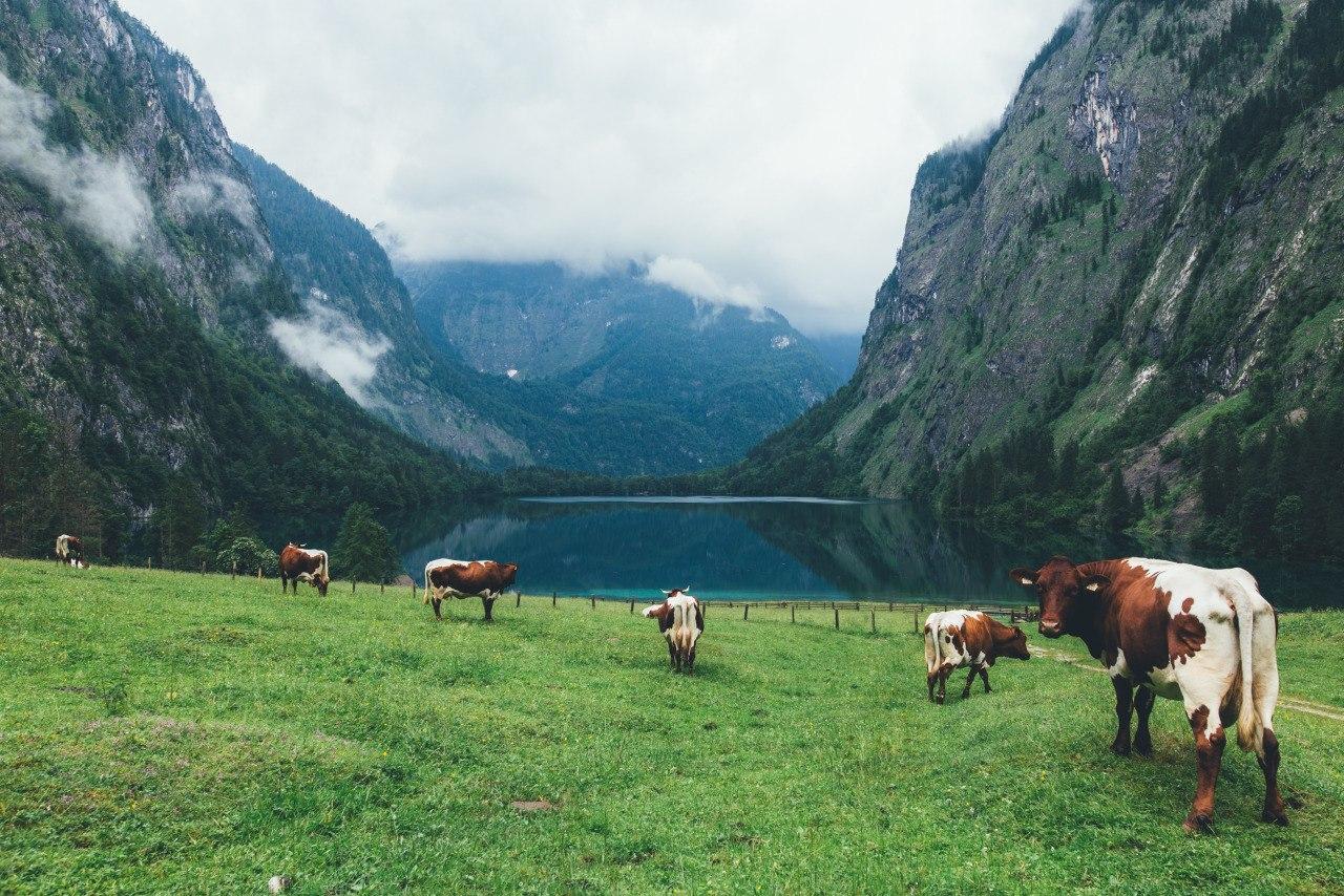 Роскошные пейзажи Норвегии - Страница 5 T1DVPcEkPhc
