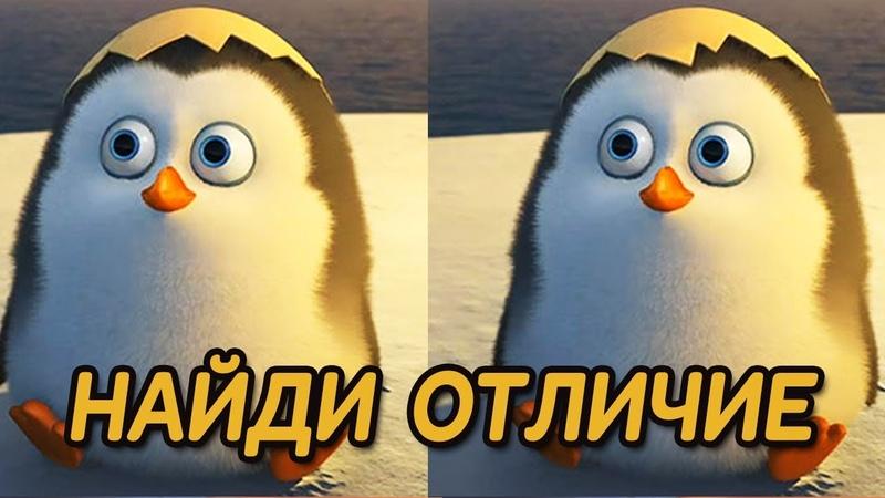 Найди отличие: Пингвины из Мадагаскара