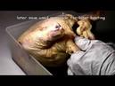 Guangzhou Roasted Chicken
