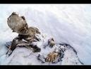 На Эвересте нашли нечто,от чего мурашки по всему телу.Кто оставил ЭТО на высоте 6000 м.Загадки мира