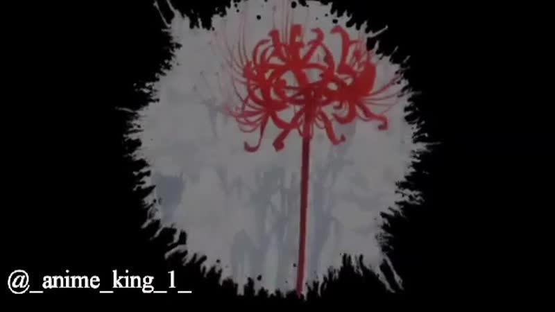 _anime_king_1__1_14112018_0927.mp4