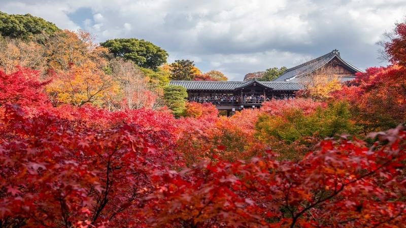 JG HDR 京都 東福寺の紅葉(国宝,名勝) Kyoto,Tofukuji in Autumn(National Treasure,Scenic Beauty)