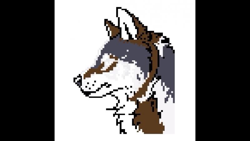 🐺 Wolf 🐺