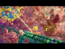 The Inner Life of the Cell Protein Packing Narrated HD