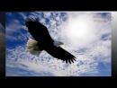 Орёл и Курица Мудрая притча о предназначении человека и его самооценке