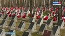 Ничего святого в Перми с могил солдат украли венки