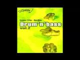 D.J. TAPOLSKY - Drum`N`Bass VoL.2 Sonic-Trip Megamix ALbums (2004, Zona Records)