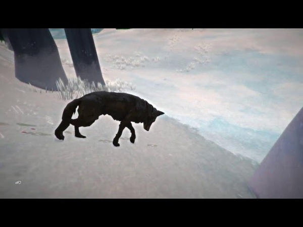The Long Dark. Wolf died. The unexpected ending.