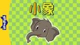 The Baby Elephant (