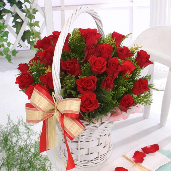 мысли, которые мы выбираем подобны краскам, которыми мы пишем на холсте жизни. думайте красиво...цветы для настроения....