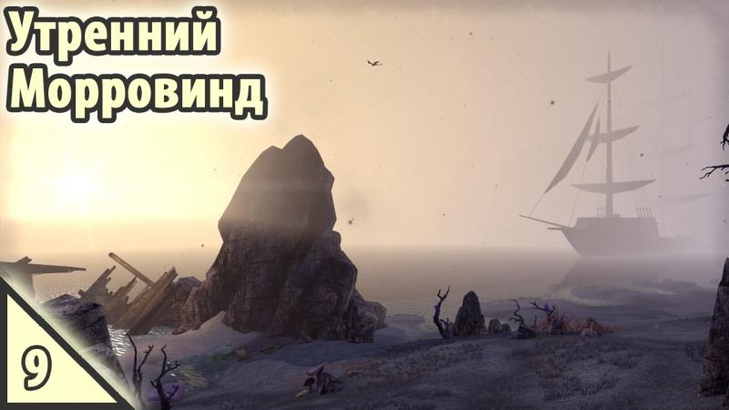 The Elder Scrolls Online Утренний Морровинд 9